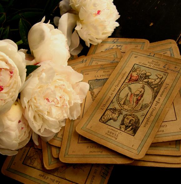 花にタロット_f0074803_22445850.jpg