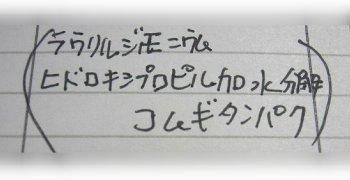 a0013306_953332.jpg