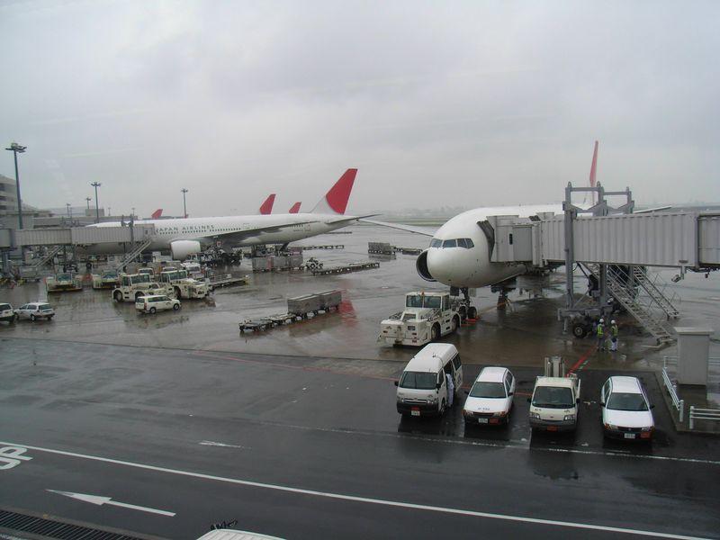 帰札: 冷える日本_c0025115_2333032.jpg
