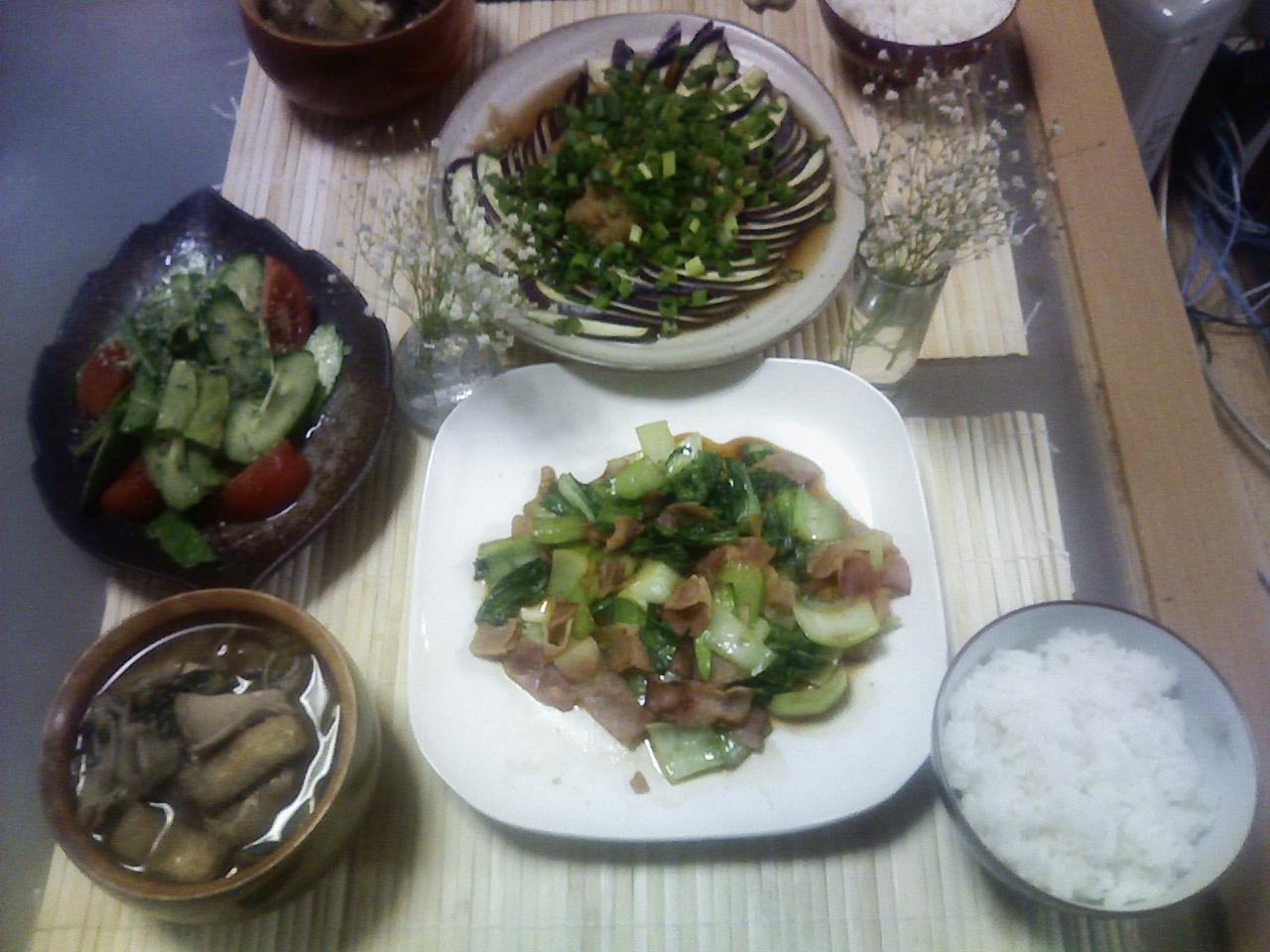 今日はさっばり!「青梗菜の炒め物」と「茄子ポン酢かけ」♪_b0137453_23222432.jpg