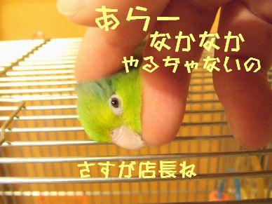 b0082757_0115549.jpg