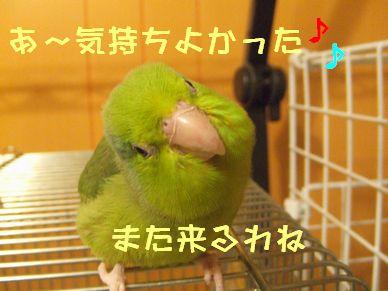 b0082757_0233593.jpg