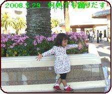 a0052666_11431415.jpg