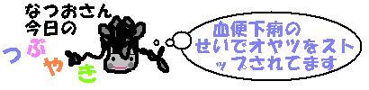 f0096569_11382966.jpg