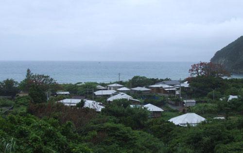 加計呂麻島、あまくまのデイゴ情報_e0028387_0133411.jpg