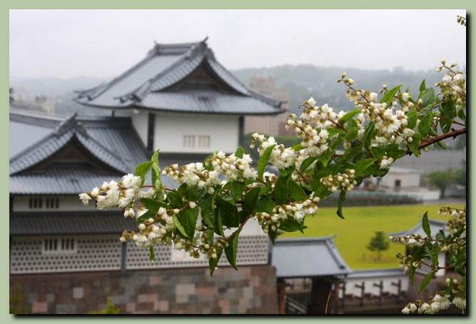 金沢城公園~兼六園_f0079990_104513.jpg