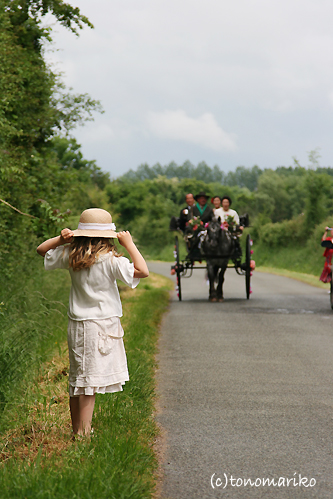 馬車で結婚式のお迎え?!_c0024345_1933814.jpg
