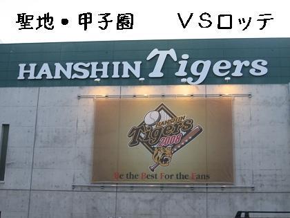おっ!サンと虎鉄_e0126046_22501761.jpg