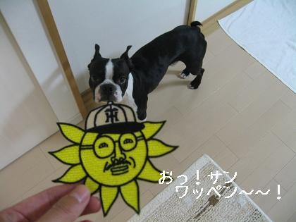 おっ!サンと虎鉄_e0126046_239238.jpg