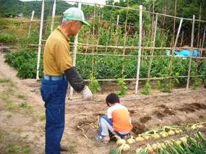 たまねぎ収穫(^。^)_f0009169_7472459.jpg