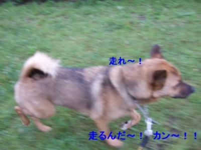 b0087400_2157536.jpg