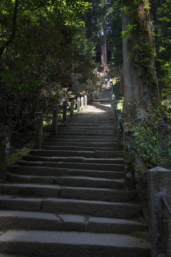 新緑の室生寺(4)_b0043304_01501.jpg