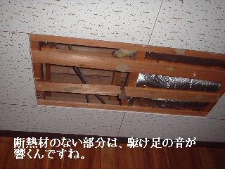 f0031037_171764.jpg