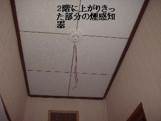 f0031037_17201286.jpg