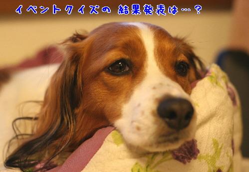 d0013149_8222135.jpg