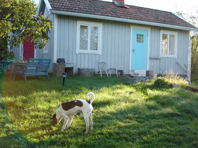 スウェーデンのテキスタイルをインテリアに、北欧時間を楽しむ_c0055551_18135970.jpg