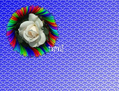 d0048312_10555054.jpg