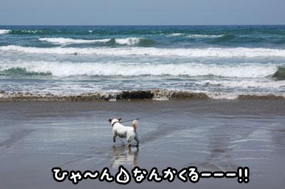 f0129214_10424411.jpg