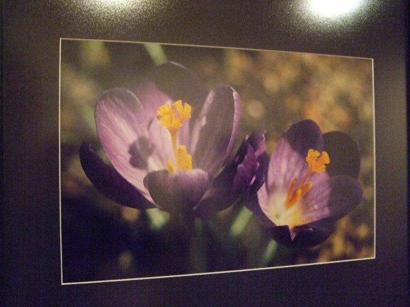 642) たぴお 「札幌現代美術展」 終了・5月19日(月)~5月24日(土) _f0126829_22141718.jpg