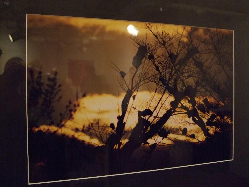 642) たぴお 「札幌現代美術展」 終了・5月19日(月)~5月24日(土) _f0126829_22152178.jpg