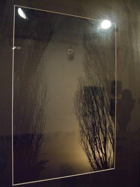 642) たぴお 「札幌現代美術展」 終了・5月19日(月)~5月24日(土) _f0126829_22391235.jpg