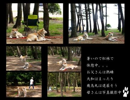 f0047870_1803125.jpg