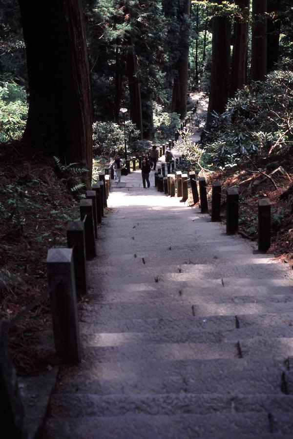 新緑の室生寺(6) × Leica_b0043304_23244492.jpg