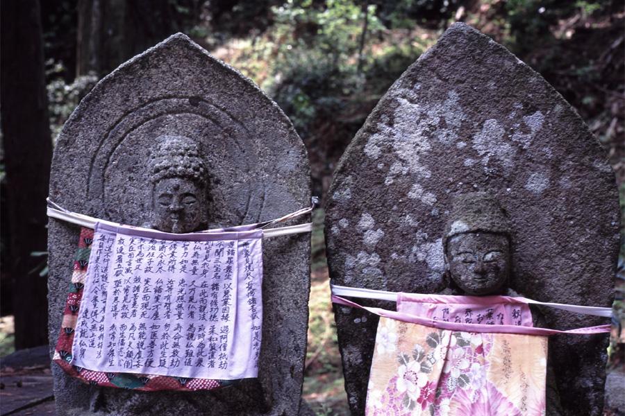 新緑の室生寺(6) × Leica_b0043304_23245712.jpg