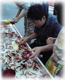 金魚注意報_b0134915_1554642.jpg