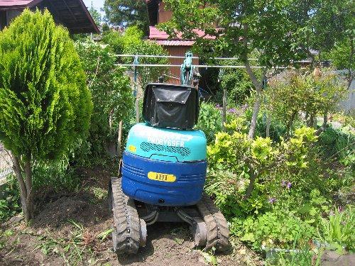 庭木の移植・内装クロス・設備取付他_c0152234_2029377.jpg
