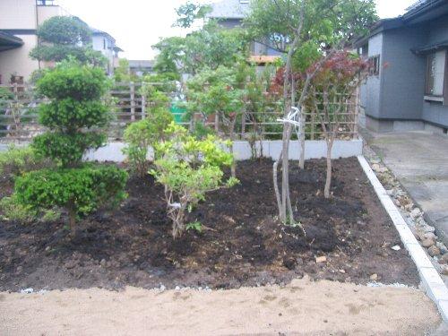 庭木の移植・内装クロス・設備取付他_c0152234_20294282.jpg