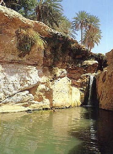 追憶のチュニジア (2) サヨナラ、チュニジア_c0011649_13584067.jpg
