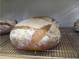 アプリコットのパンと石挽き粉のパン_f0007061_10124492.jpg