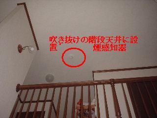 f0031037_1738438.jpg
