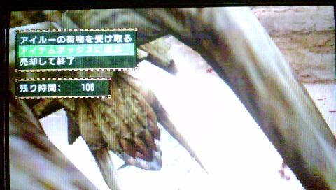 f0168780_193782.jpg