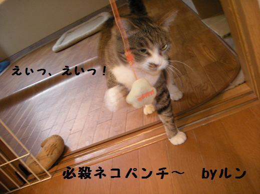 f0081100_22421173.jpg