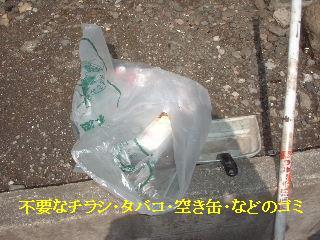 f0031037_1652753.jpg