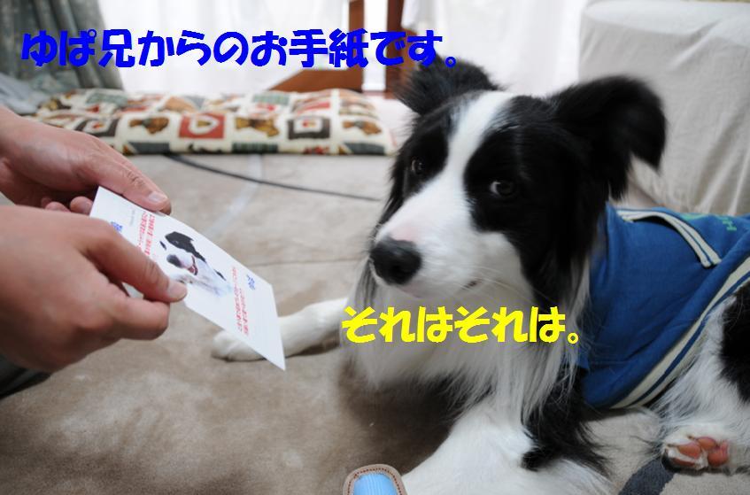 c0147241_075660.jpg