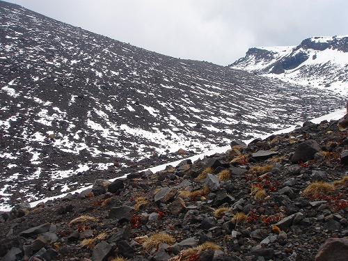 <2008年5月17日> 世界有数の活火山「浅間山」に登る_c0119160_23195392.jpg