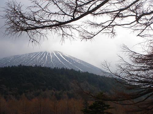 <2008年5月17日> 世界有数の活火山「浅間山」に登る_c0119160_235717.jpg