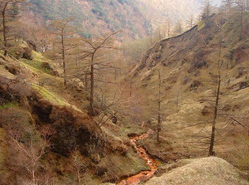 <2008年5月17日> 世界有数の活火山「浅間山」に登る_c0119160_2358085.jpg