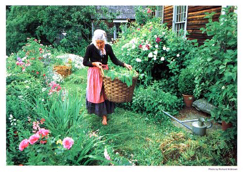 Tasha  Tudor展_f0127281_1925415.jpg