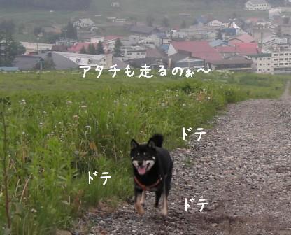 f0068501_23292119.jpg