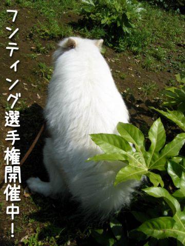 FinePix Z20fdモニター♪黒岡助手 _c0062832_18185527.jpg