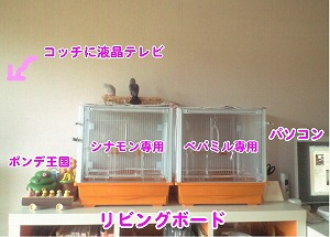 b0127466_1644753.jpg