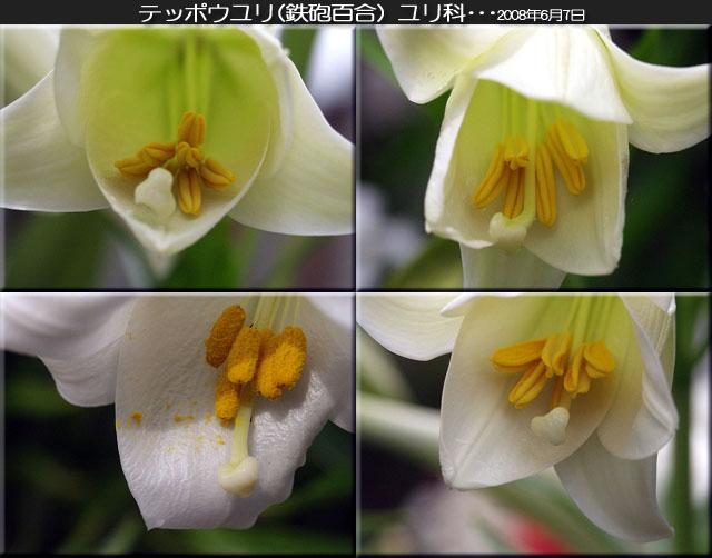 f0104569_025143.jpg