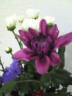 b0053091_111468.jpg