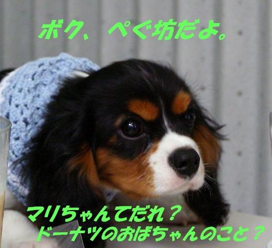 b0067012_15473776.jpg