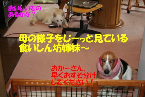 f0121712_15215525.jpg