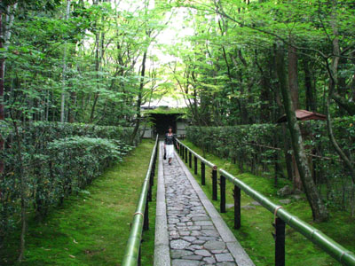 高桐院(大徳寺)_e0048413_2131321.jpg